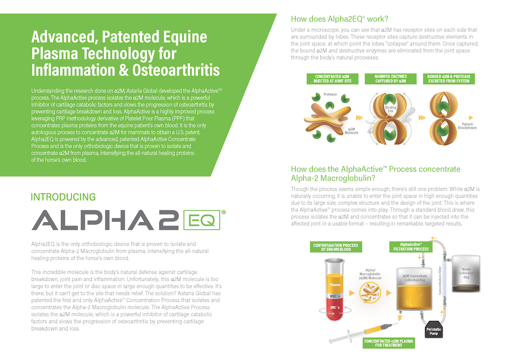 AST ALPHA2EQ Customer Brochures Page 2